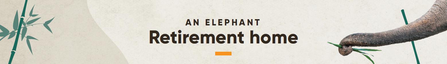 An elephant retirement home
